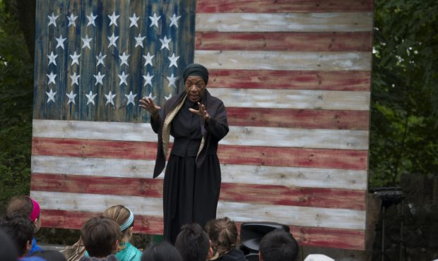 Harriet Tubman: The Chosen One by Gwendolyn Briley-Strand |